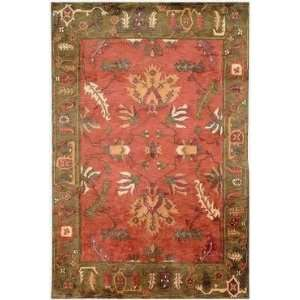 Safavieh   Rodeo Drive   RD240A Area Rug   5 x 8   Multi