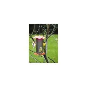 Choice 1 Quart Forever Nyjer Bird Feeder   Neon Orange