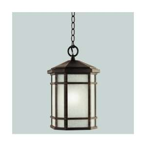 Kichler Cameron 1 Light Outdoor Hanging Lantern 9511PR