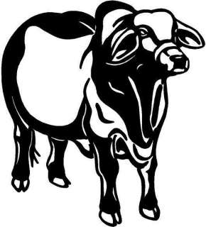 Brahman Bull Vinyl Decal Car Truck Window Sticker