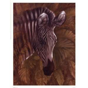 Safari Zebra by Joe Sambataro 13x17