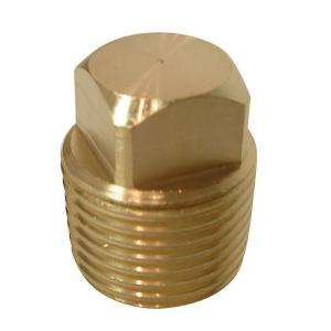 Watts 1/2 in. Brass Square Head Pipe Plug A 823