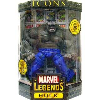 Marvel Legends Icon Hulk 12 inch Action Figure  Toys & Games