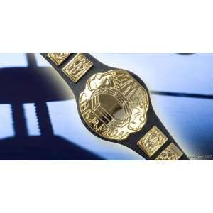 WWE Wrestling MIXED MARTIAL ARTS Toy Action Figure BELT