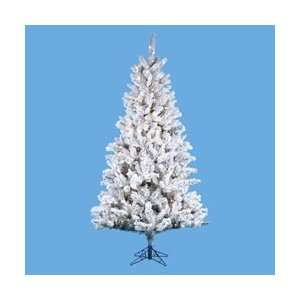 9 Pre Lit Flocked Norway Pine Christmas Tree   Clear