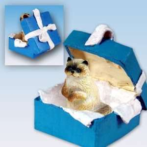 Ragdoll Blue Gift Box Cat Ornament
